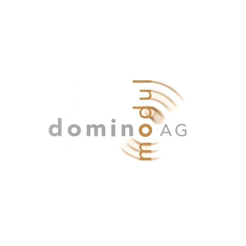 Domino Modul AG